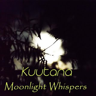 https://kuutana.bandcamp.com/track/moonlight-whispers